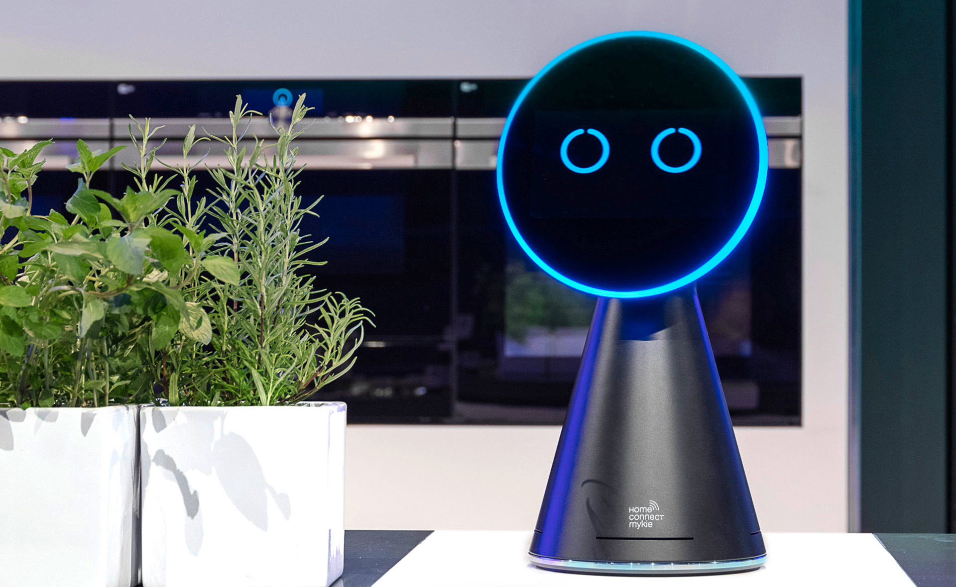 The little black kitchen assistant with the blue glowing face stands next to a green herb pot in the show kitchen.